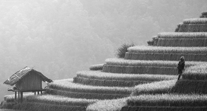 Terrasse en béton à Athis-mons 91200 : Prix et devis