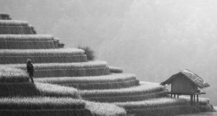 Terrasse en béton à Bayeux 14400 : Prix et devis