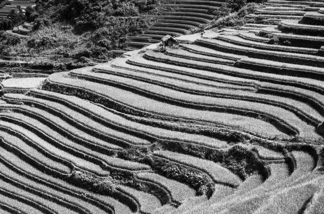 Terrasse en béton à Cahors 46000 : Prix et devis