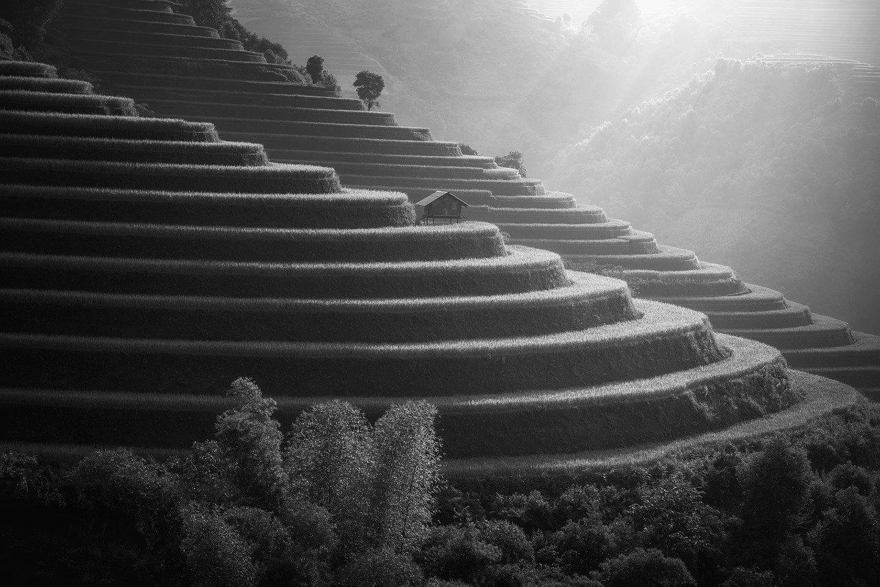 Terrasse en béton à Cayenne 97300 : Prix et devis
