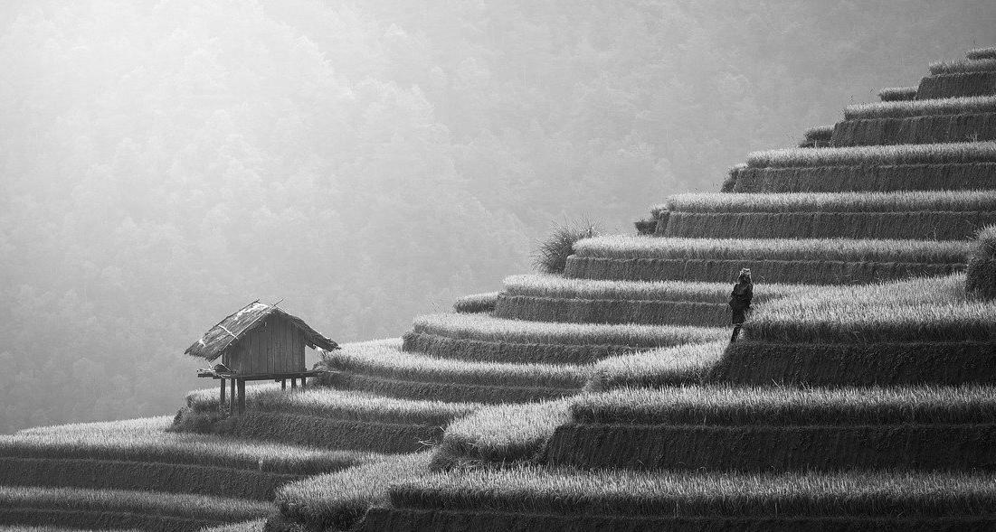 Terrasse en béton à Léognan 33850 : Prix et devis