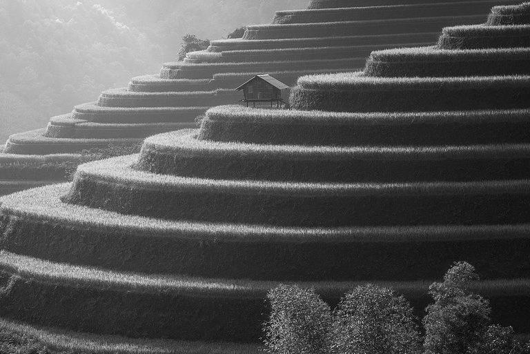 Terrasse en béton à Marck 62730 : Prix et devis