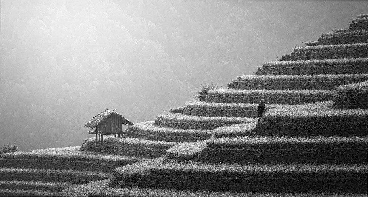Terrasse en béton à Provins 77160 : Prix et devis