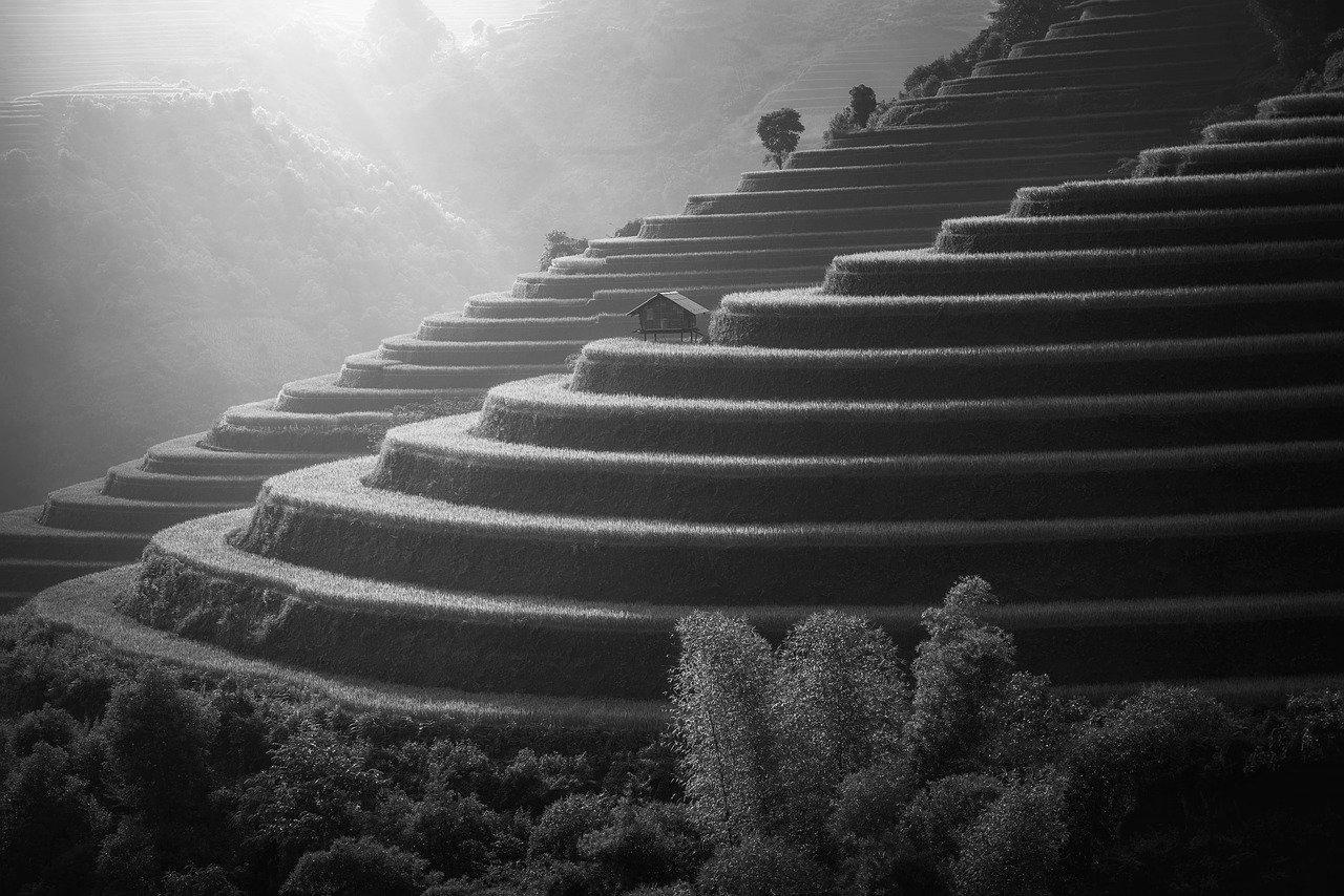 Terrasse en béton à Yzeure 03400 : Prix et devis